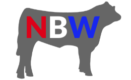 National Beef Wire